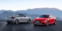 www.moj-samochod.pl - Artykuďż˝ - W Pekinie pokazane zostały najmocniejsze odmiany Audi TT RS